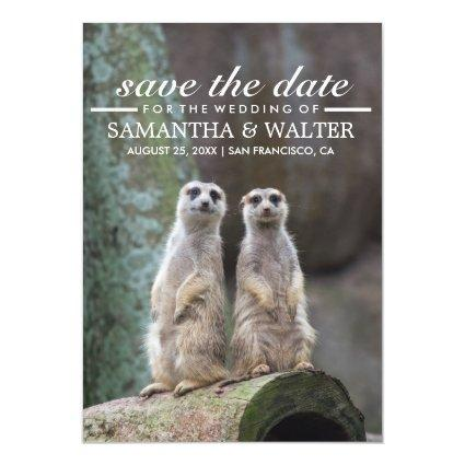 Adorable Meerkats Funny Expression Save The Date Magnetic Invitation
