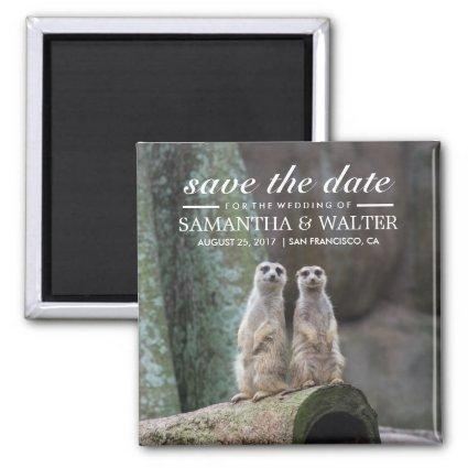 Adorable Meerkats Save The Date Magnet