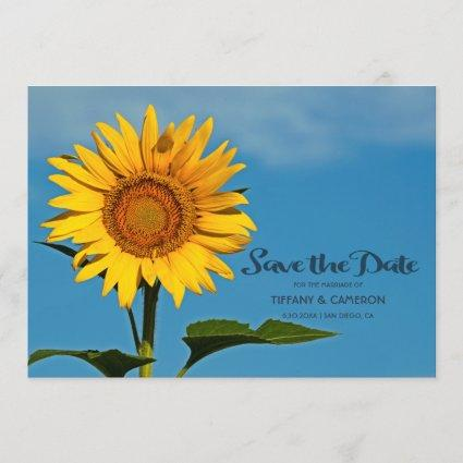 Beautiful Sunflower And Sky Wedding Save The Date