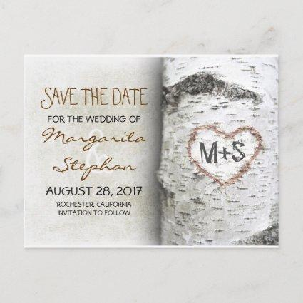 birch tree save the date Cards