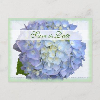 Blue Moon Hydrangea Wedding