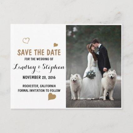 Bride and groom - couple christmas - white dogs announcement