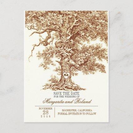 brown old oak tree save the date Cards