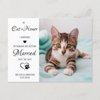 Cat Of Honor Pet Wedding Photo Save The Date  Announcement