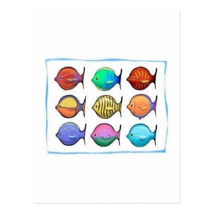 Colorful Fish Cards