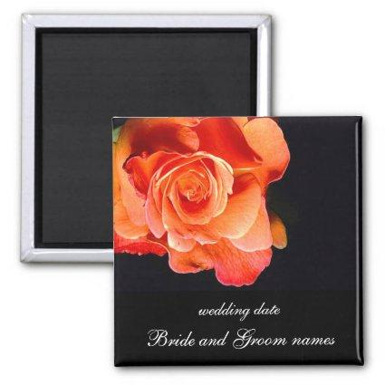 Dark Orange Rose Magnets
