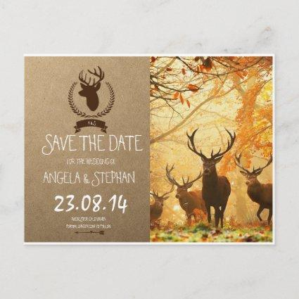 Deer in the autumn sun rays invitations