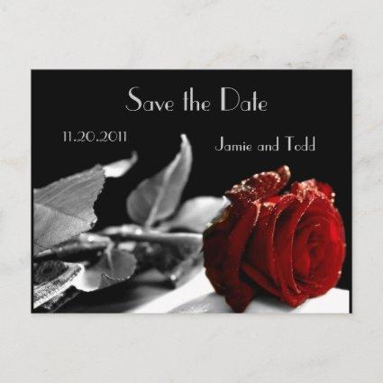 Elegant Red Rose Save the Date Announcement