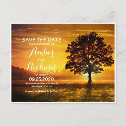 Fall Tree With Autumn Sunset Save The Date Announcement