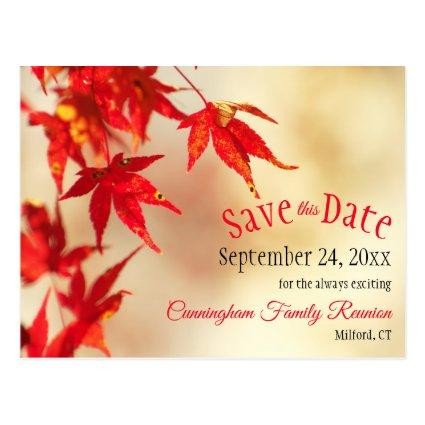 Family Reunion Save The Date Fall Red Leaves Bokeh