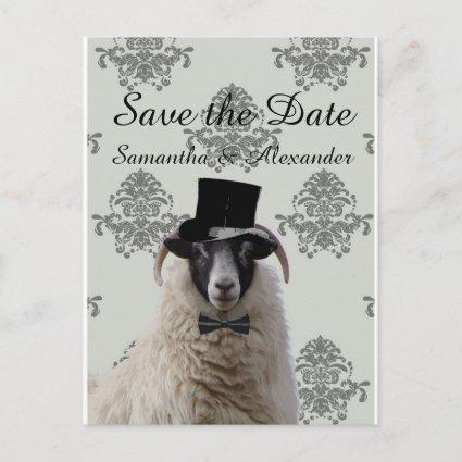 Funny wedding groom sheep  save the date announcement