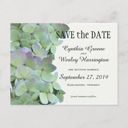 Green Hydrangea Wedding Save the Date Cards