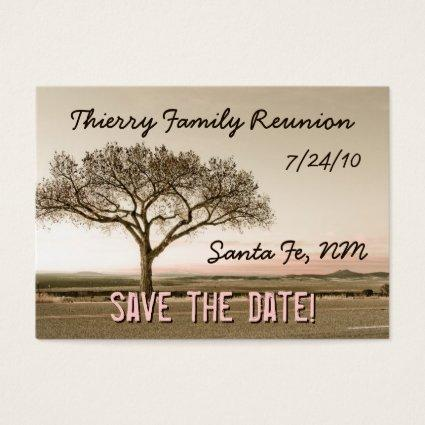 High Country Save the Date Mini