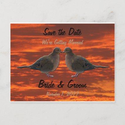 Kissing Doves Save the Date Announcements Cards
