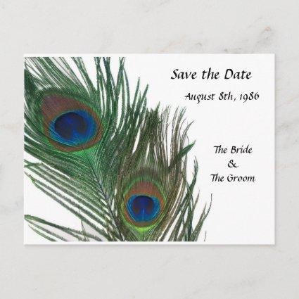 Lovely White Peacock Save the Date Announcement