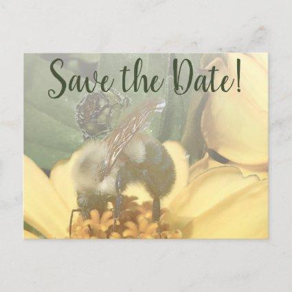 Meant to Bee Soft Toned Photo Save the Date Holiday