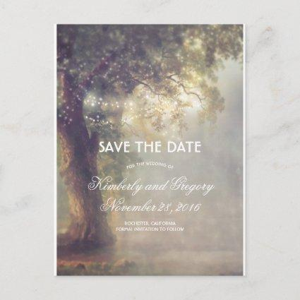 Old Oak Tree and String Lights Save the Date Announcement