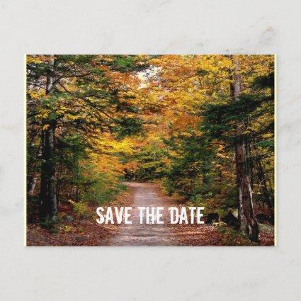 Path in the Woods Fall Save the Date Announcement