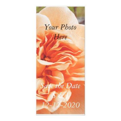 Peach rose wedding theme magnetic save the date magnetic invitation