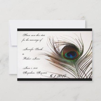 Peacock Feather Glamor Save the Date