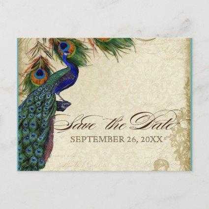 Peacock & Feathers Formal Save the Date Aqua Blue Announcement
