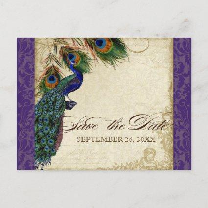 Peacock & Feathers Formal Save the Date Purple Announcement