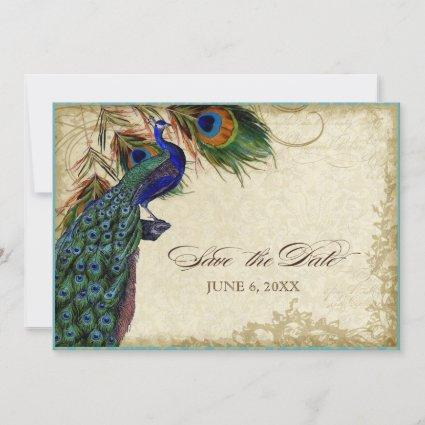 Peacock & Feathers Save the Date Tea Stained
