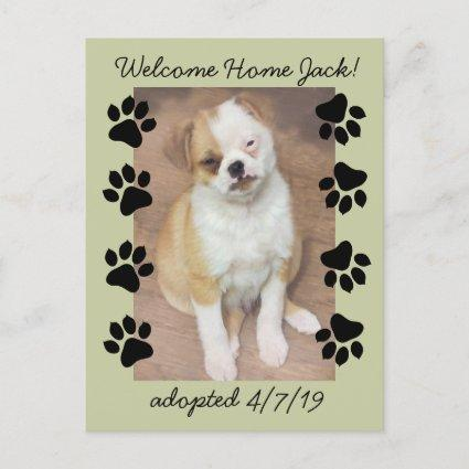 Pet Adoption Save The Date Photo with Paw Prints Announcement