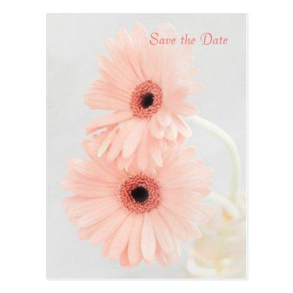 Pink Gerbera Save the Date announcement