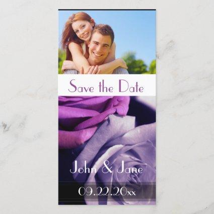 """Purple Roses /photo  """"Save the Date"""" Save The Date"""
