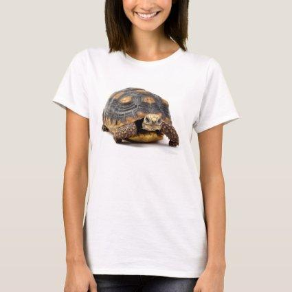 Redfoot Turtle Gifts T-Shirt