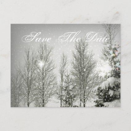 Romantic Forest trees Winter Wedding save the date Announcement