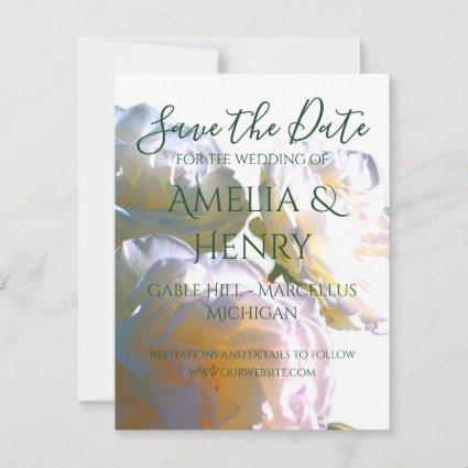 Romantic white  roses - save the date