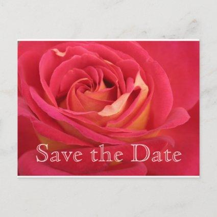Rose Save the date 80th Birthday Celebration PostC Announcement