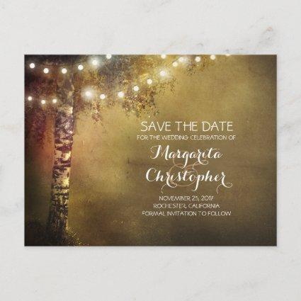 rustic country birch tree & lights save the date announcement