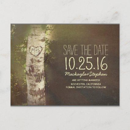 Rustic country save the date with birch tree announcement