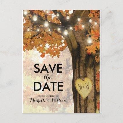 Rustic Fall Autumn Tree Lights Save the Date Announcement