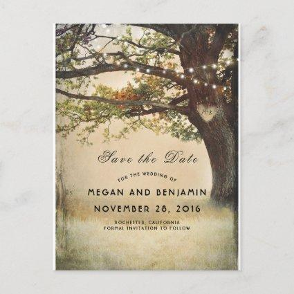 Rustic Fall Tree and Twinkle Lights Save the Date Announcement