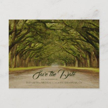 Rustic Live Oak Tree Wedding Save The Date Announcement