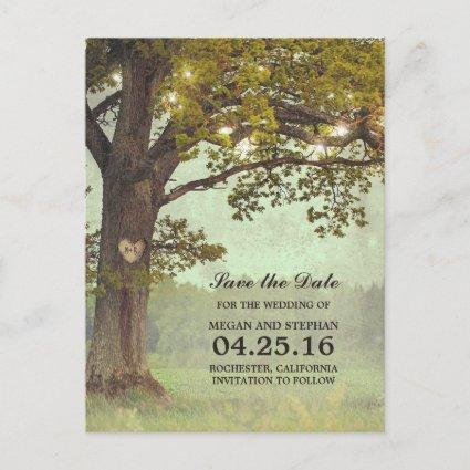 Rustic Oak Tree and String Lights Save the Date Announcement