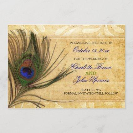 Rustic Peacock Feather wedding save the date