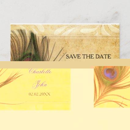 Rustic Peacock Feather wedding save the date Announcement