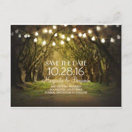 Rustic String Lights Tree Path Save the Date Announcement