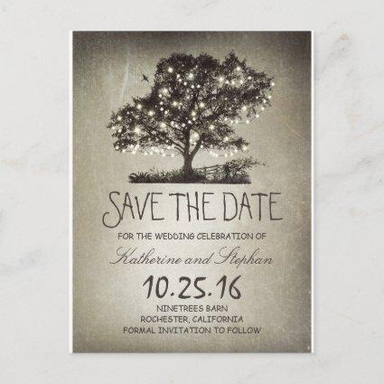 Rustic string lights tree vintage save the date announcement