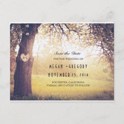 Rustic Tree and Carved Heart Save the Date Announcement