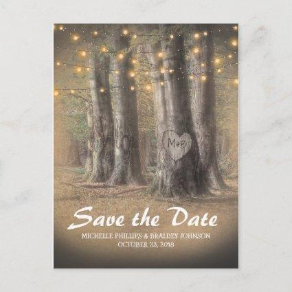 Rustic Tree & String Lights Wedding Save the Date Announcements