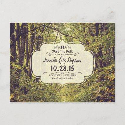 Rustic woodland trees path save the date Cards