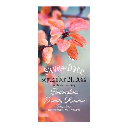 Save The Date Family Reunion Autumn Leaves Bokeh Rack Card