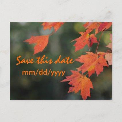 Save the date for Fall Announcement
