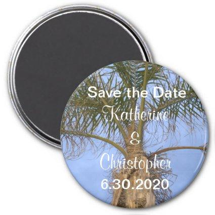 Save the Date Palm Tree Blue Sky Magnets